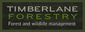 Minnesota Forestry Management